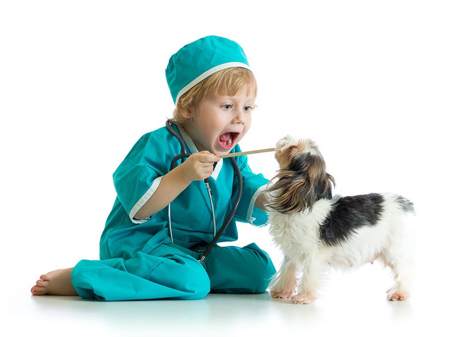 Child playing doctor with a dog